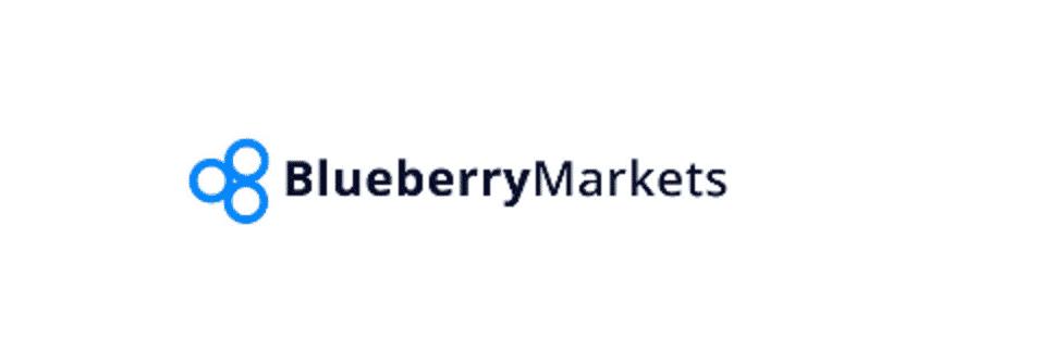 تقيم شركة BlueberryMarkets